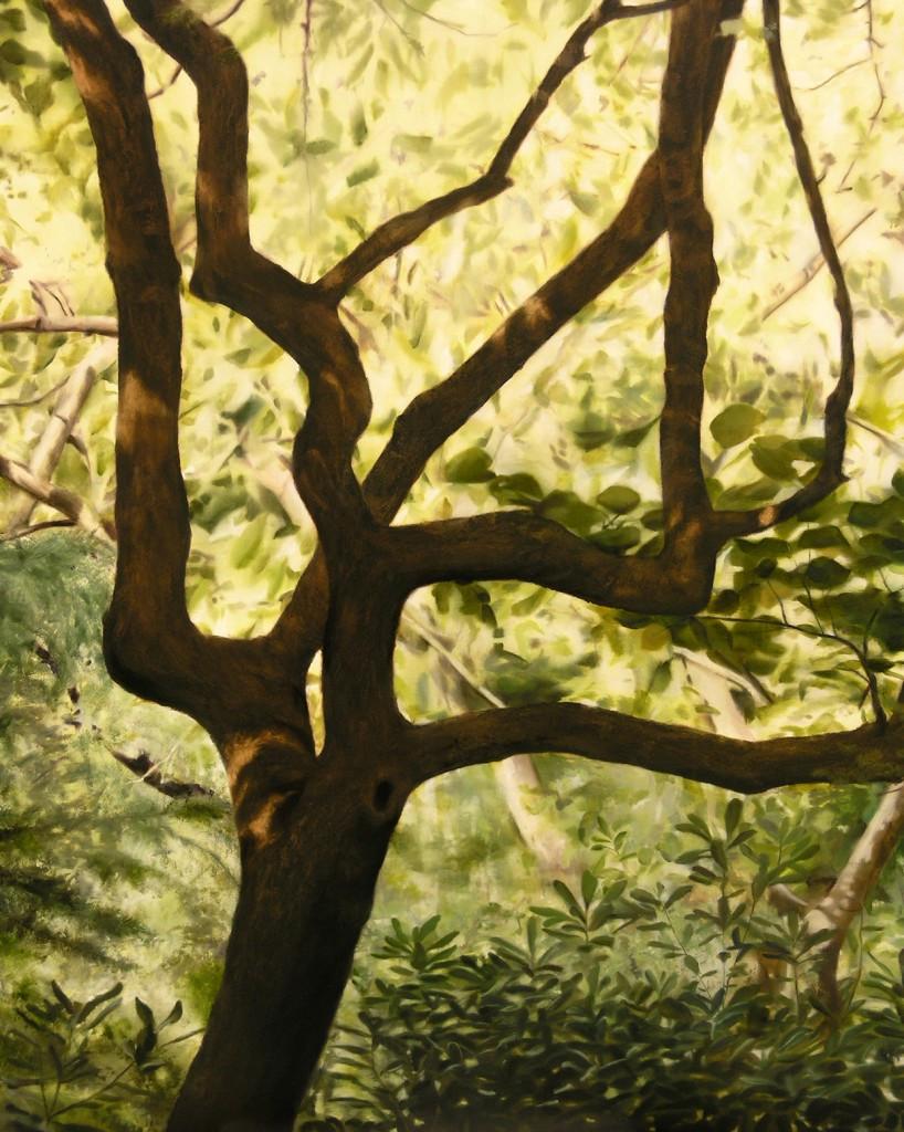 Turo Park Tree 162 x 130 cm